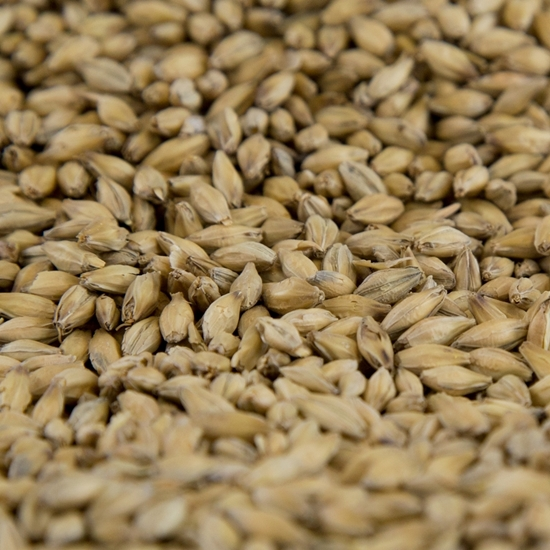 Picture of Gambrinus ESB Pale Malt